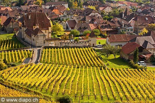 10433 - Photo : vignoble du Landeron dans le canton de Neuchâtel - Château de Cressier