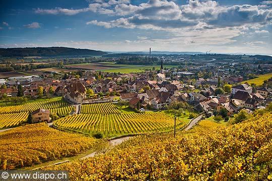 10436 - Photo :Cressier et le vignoble du Landeron dans le canton de Neuchâtel