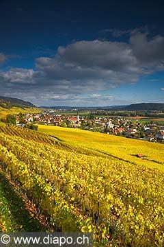 10439 - Photo :Cressier et le vignoble du Landeron dans le canton de Neuchâtel