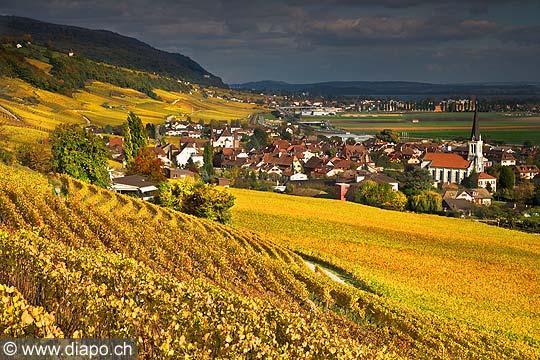 10440 - Photo :Cressier et le vignoble du Landeron dans le canton de Neuchâtel
