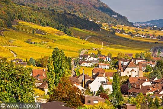 10441 - Photo :Cressier et le vignoble du Landeron dans le canton de Neuchâtel