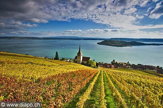 10449 - Photo : le vignoble de Ligerz avec son église dans le canton de Berne et le lac bienne avec l'île de Saint-Pierre