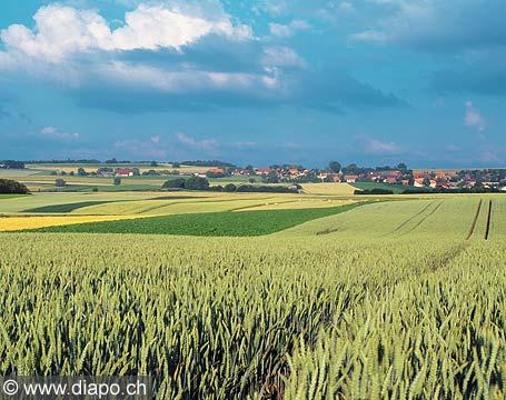 10672 - Suisse, campagne Vaudoise entre Boumens et Boussens