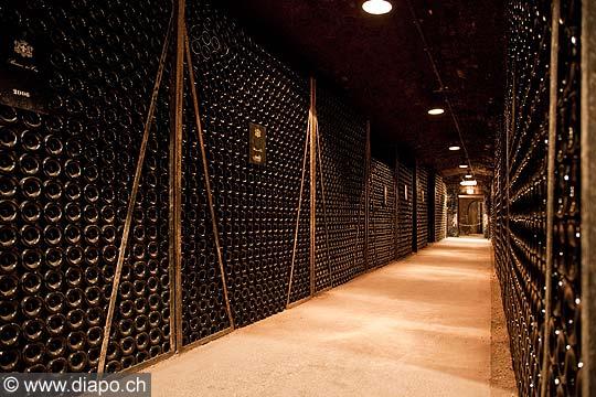11976 - Photo: Les caves du Château de Meursault, Bourgogne, France