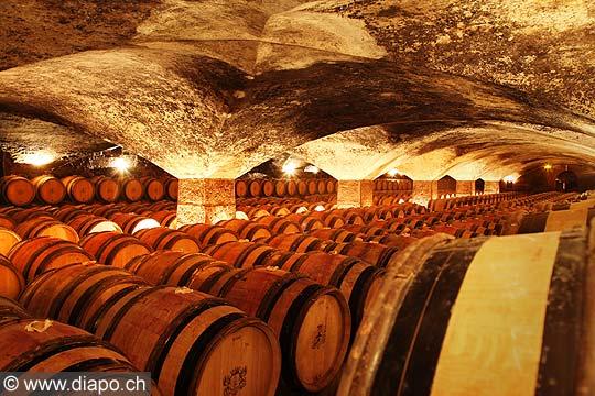 11977 - Photo: Les caves du Château de Meursault, Bourgogne, France