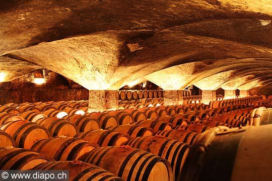 11980 - Photo: Les caves du Château de Meursault, Bourgogne, France