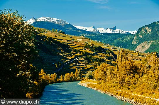 12779 - Photo: Suisse, Valais, vignoble de Sion avec le Rhône, switzerland, swiss wines - wein, schweiz