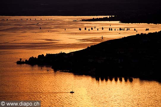 13188 - Lavaux et le Lac Léaman
