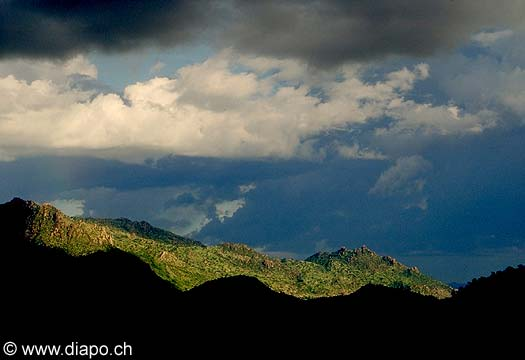 3549 - Nord Cameroun - Montagne Mouyeng