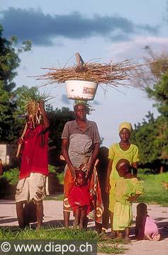 3566 - Nord Cameroun - sur la route