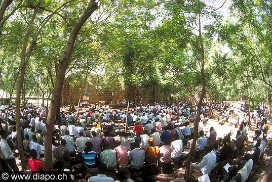 3580 - Nord Cameroun - palabre sous les arbres