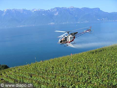 4966 - le sulfatage par hélicoptère - Lavaux -Suisse
