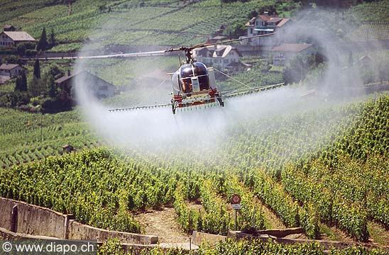 8323 - Photo : Suisse, canton de Vaud, sulfatage du vignoble de Lavaux par hélicopère