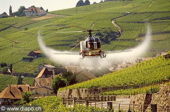 8325 - Photo : Suisse, canton de Vaud, sulfatage du vignoble de Lavaux par hélicopère
