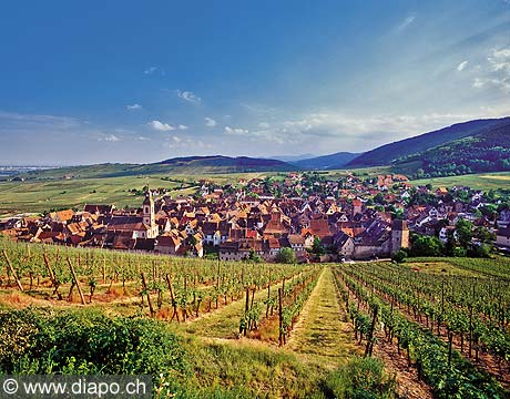 8610 - Photo: France - Alsace - Village de Riquewihr dans le vignoble