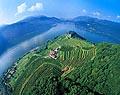 131 - Vignoble de Morcot - Tessin - Suisse
