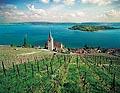 141 - Ligerz et le lac de Bienne.