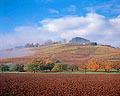 150 - Hallau, le plus grand vignoble d'un seul tenant de Suisse orientale(SH).