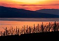 161 - Lavaux et lac Léman