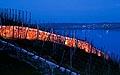 209 - « Viniterra » Land-Art Projekt de Ulrich Studer, éclairage à la bougie de Bienne à La Neuveville, nuit du 21-22 avril 2000