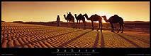 691 - Poster du Sahara