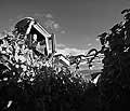10494 - DOMAINE DU MARTHERAY, le travail mécanique