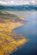 10714 - Photo : Suisse, canton de Vaud, vignoble de Lavaux en terrasses, le Lac Léman - vein, wine, Vineyards, Switzerland