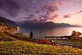 11228 - Photo :  Suisse - Château de Chillon au bord du Lac Léman