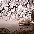 11401 - Photo :  Suisse - Château de Chillon au bord du Lac Léman
