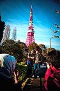11683 - Photo :  Japon, Tokyo, Tokyo Tower