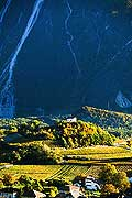 12015 - Photo: Suisse, Valais, vignoble de Salquenen, Salgesch, switzerland, swiss wines - wein, schweiz