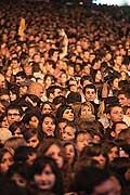 12126 - 33em Paléo festival de Nyon - 2008, Photo de musique, spectacle et concert - Mika