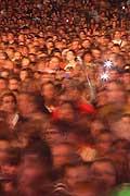 12135 - 33em Paléo festival de Nyon - 2008, Photo de musique, spectacle et concert - Mika