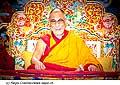 12745 - Photo: Tenzin Gyatso, le dalaï-lama, le plus haut chef spirituel du Tibet à Lausanne en Suisse