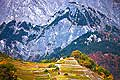 12783 - Photo: Suisse, Valais, vignoble, switzerland, swiss wines - wein, schweiz