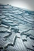 12838 - Suisse, canton de Vaud, vignoble de Lavaux sous la neige