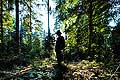 13169 - La forêt du Jorat et ses Brigands