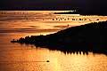 13185 - photo: Suisse - lac Léman, Lavaux avec bateaux