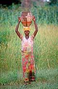 3573 - Nord Cameroun - vers un puit