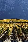 4925 - Valais, Suisse
