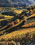4927 - Valais, Suisse