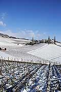 5209 - Suisse, Vaud, La Côte, Village de Féchy sous la neige