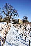 5211 - Suisse, Vaud, La Côte, Château d'allaman