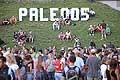 7733 - Photo de musique, spectacle et concert : Paléo festival de Nyon - 2005