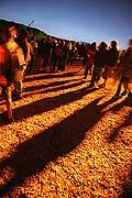7758 - Photo de musique, spectacle et concert : Paléo festival de Nyon - 2005