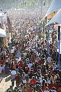 7823 - Photo de musique, spectacle et concert : Paléo festival de Nyon - 2005