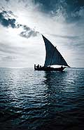 8168 - Photo : île de Zanzibar, Tanzanie, Afrique