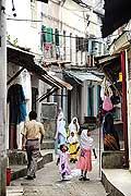 8224 - Photo : île de Zanzibar, Tanzanie, Afrique