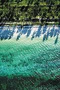 8314 - Photo : île de Zanzibar, Tanzanie, Afrique