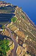 8329 - Photo : vue aérienne, Suisse, canton de Vaud, vignoble de Lavaux, Lac Léman